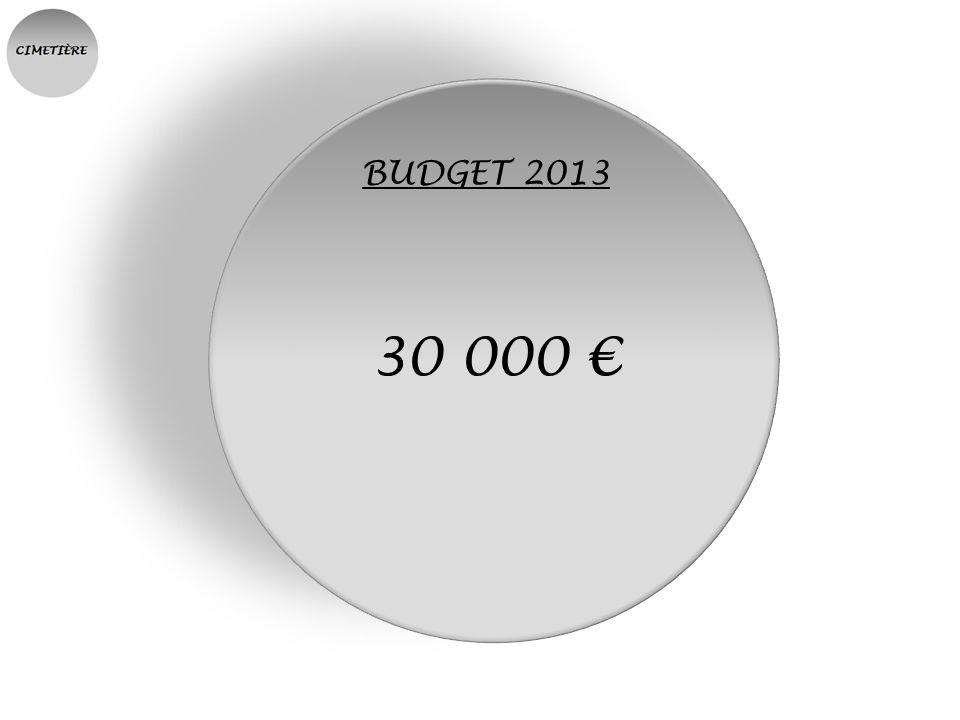 BUDGET 2013 30 000