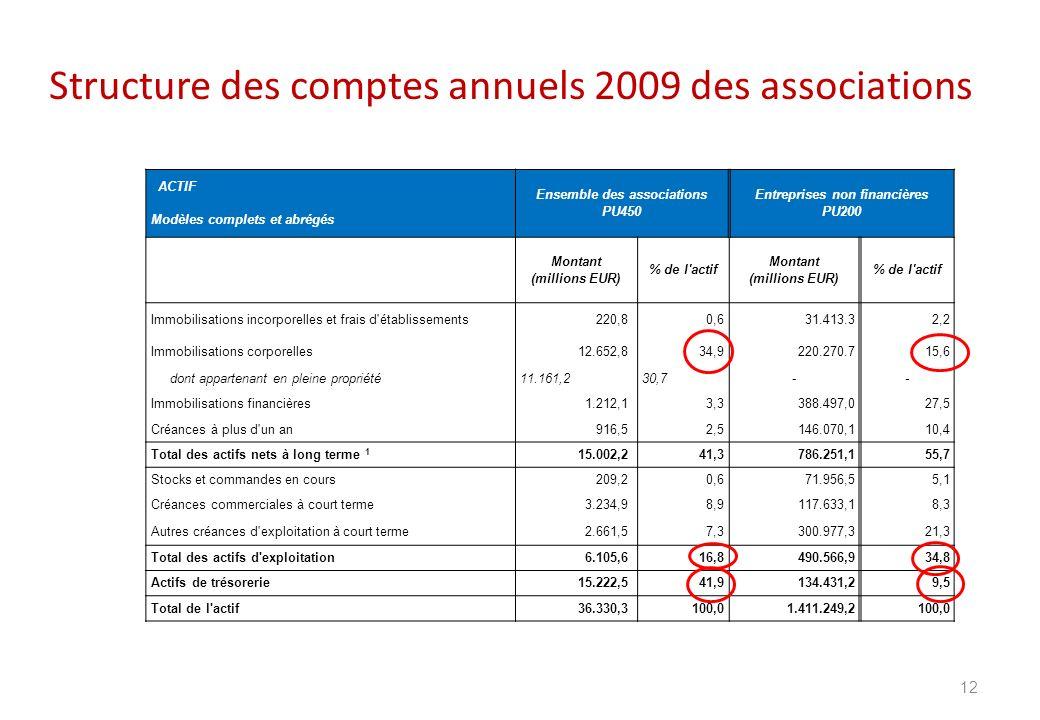 Structure des comptes annuels 2009 des associations 12 ACTIF Ensemble des associations PU450 Entreprises non financières PU200 Modèles complets et abr