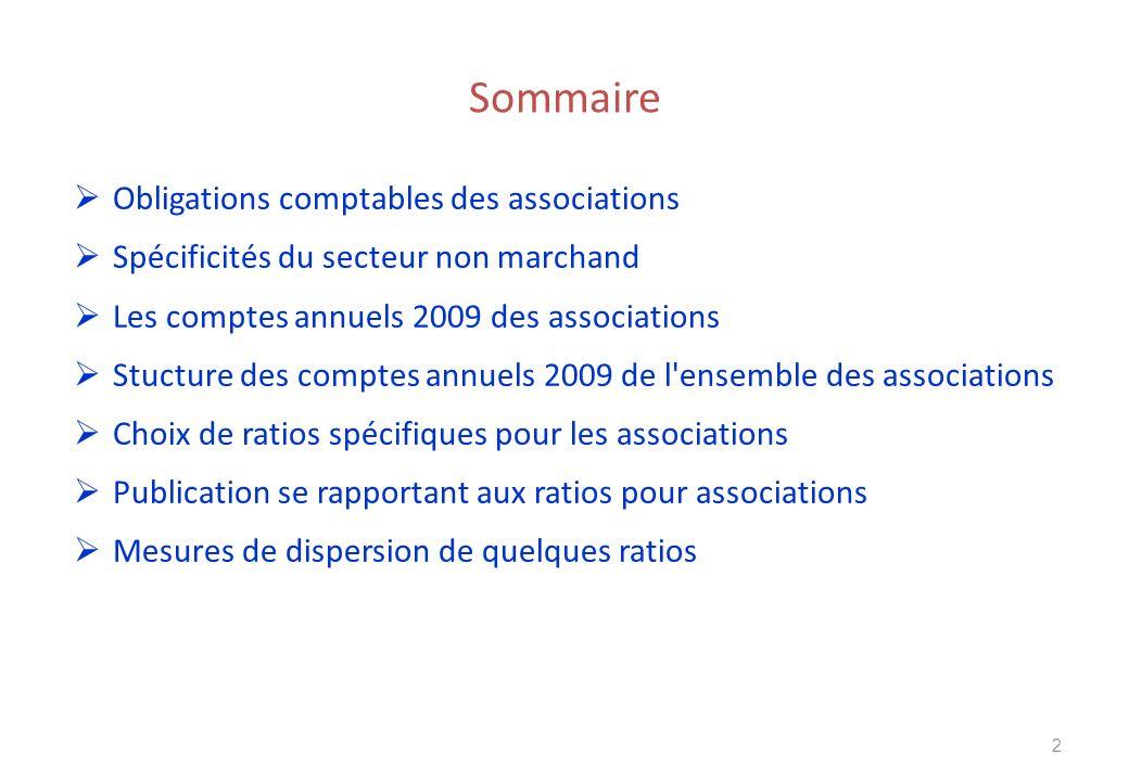 Sommaire Obligations comptables des associations Spécificités du secteur non marchand Les comptes annuels 2009 des associations Stucture des comptes a