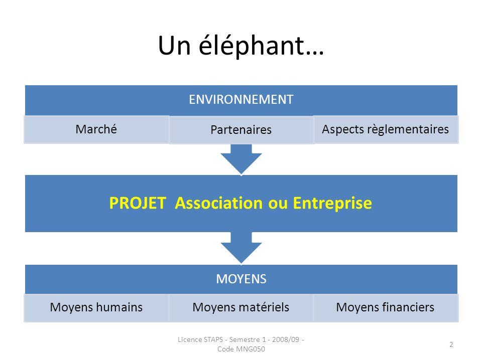 Un éléphant… MOYENS Moyens humainsMoyens matérielsMoyens financiers PROJET Association ou Entreprise ENVIRONNEMENT Marché Partenaires Aspects règlemen
