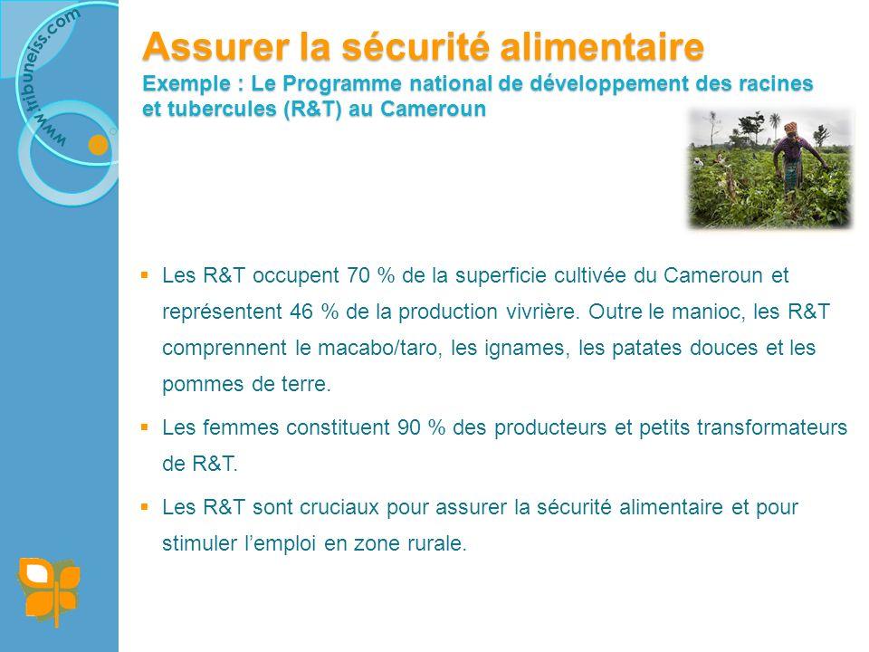Assurer la sécurité alimentaire Exemple : Le Programme national de développement des racines et tubercules (R&T) au Cameroun Les R&T occupent 70 % de la superficie cultivée du Cameroun et représentent 46 % de la production vivrière.