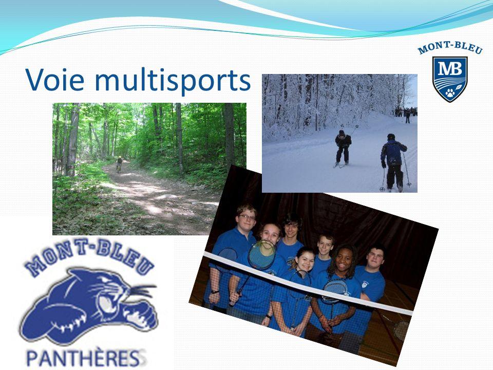 Voie multisports