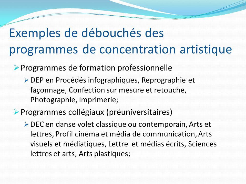 Exemples de débouchés des programmes de concentration artistique Programmes de formation professionnelle DEP en Procédés infographiques, Reprographie