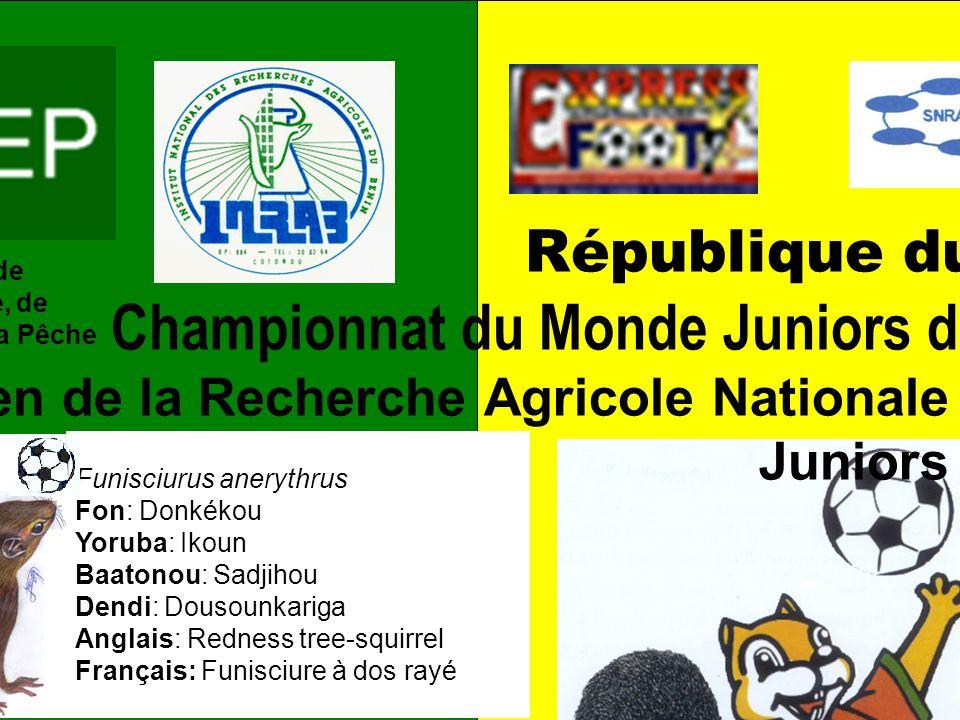 Allez les Écureuils Juniors! Cette fois-ci, on doit gagner! Conception et réalisation: G.A. Mensah, M.R.M. Ekué & C.B. Pomalégni – CRA-Agonkanmey/INRA