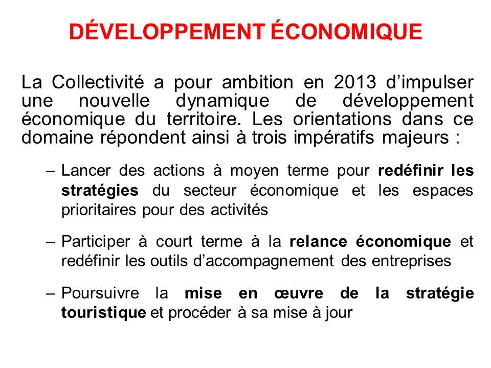 DÉVELOPPEMENT ÉCONOMIQUE La Collectivité a pour ambition en 2013 dimpulser une nouvelle dynamique de développement économique du territoire. Les orien