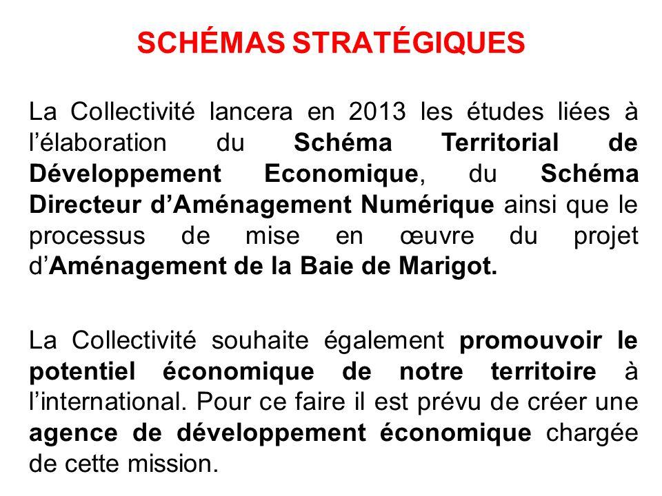 SCHÉMAS STRATÉGIQUES La Collectivité lancera en 2013 les études liées à lélaboration du Schéma Territorial de Développement Economique, du Schéma Dire