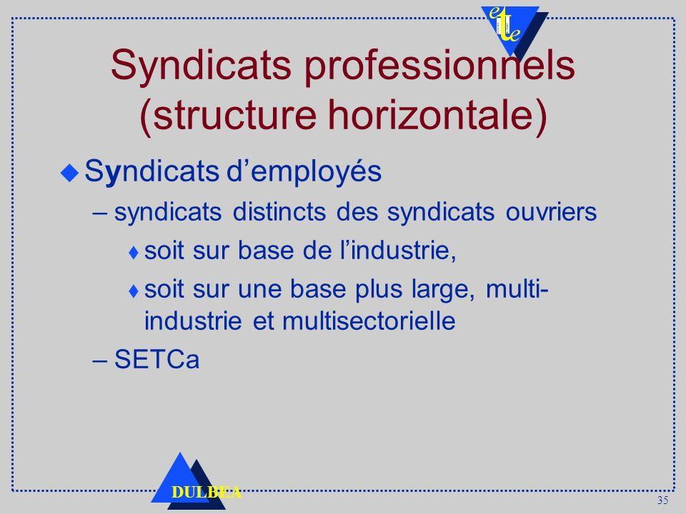 35 DULBEA Syndicats professionnels (structure horizontale) u Syndicats demployés –syndicats distincts des syndicats ouvriers t soit sur base de lindus