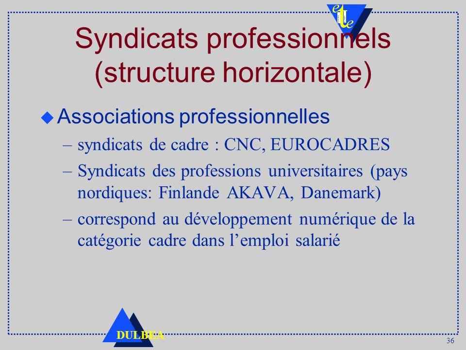 36 DULBEA Syndicats professionnels (structure horizontale) Associations professionnelles –syndicats de cadre : CNC, EUROCADRES –Syndicats des professions universitaires (pays nordiques: Finlande AKAVA, Danemark) –correspond au développement numérique de la catégorie cadre dans lemploi salarié