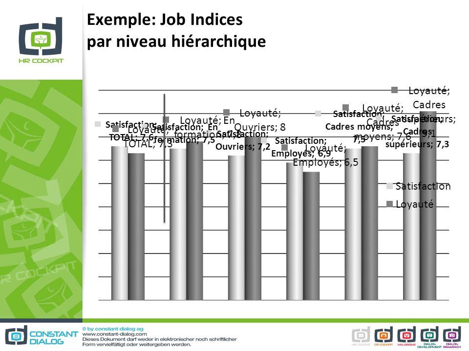Exemple: Job Indices par niveau hiérarchique