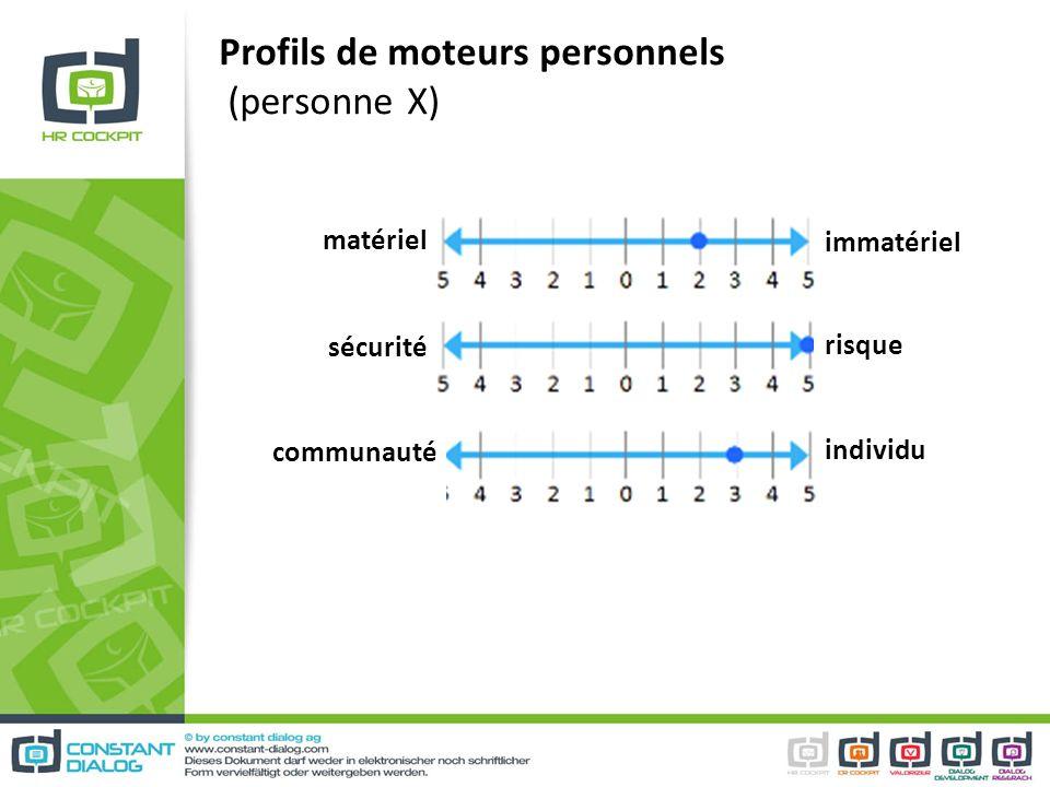 Profils de moteurs personnels (personne X) matériel immatériel sécurité communauté risque individu
