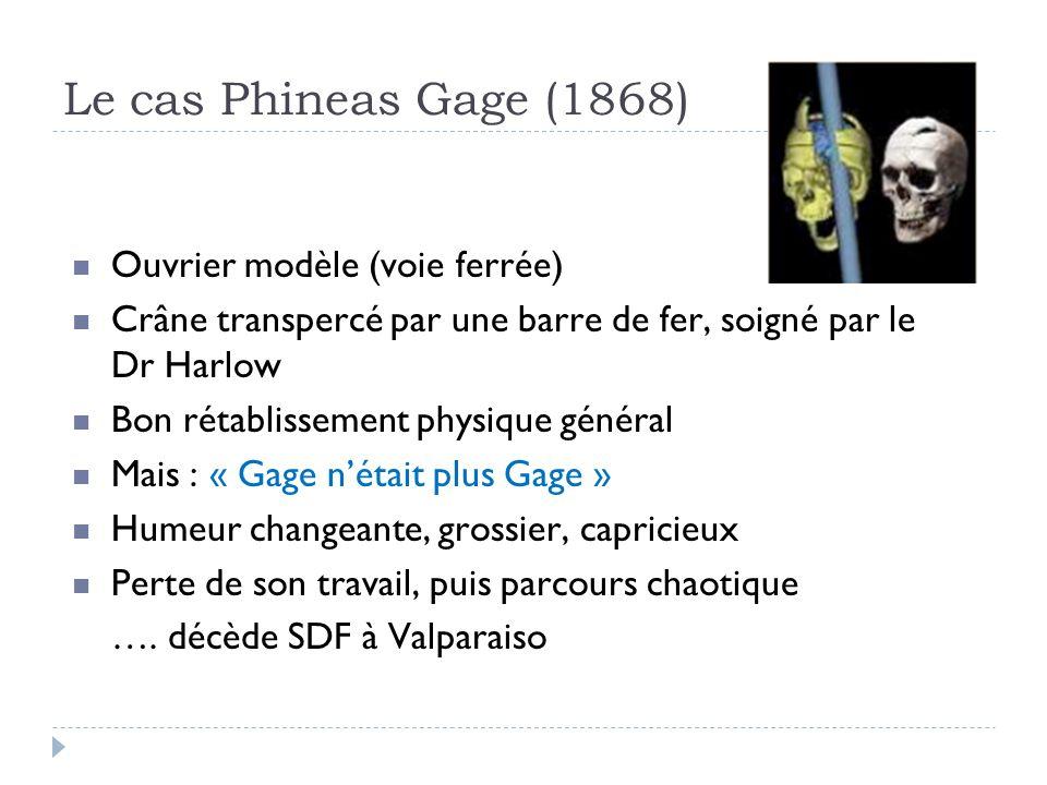 Le cas Phineas Gage (1868) Ouvrier modèle (voie ferrée) Crâne transpercé par une barre de fer, soigné par le Dr Harlow Bon rétablissement physique gén