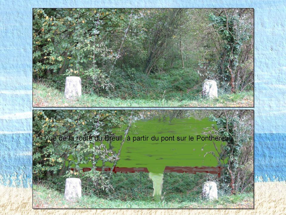 Vue de la route du Breuil à Grand-Fief