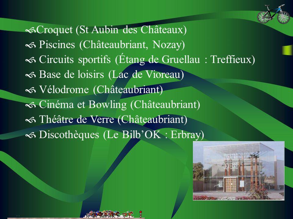 Croquet (St Aubin des Châteaux) Piscines (Châteaubriant, Nozay) Circuits sportifs (Étang de Gruellau : Treffieux) Base de loisirs (Lac de Vioreau) Vélodrome (Châteaubriant) Cinéma et Bowling (Châteaubriant) Théâtre de Verre (Châteaubriant) Discothèques (Le BilbOK : Erbray)