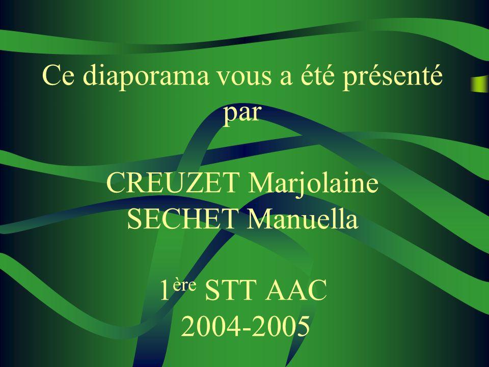 Ce diaporama vous a été présenté par CREUZET Marjolaine SECHET Manuella 1 ère STT AAC 2004-2005