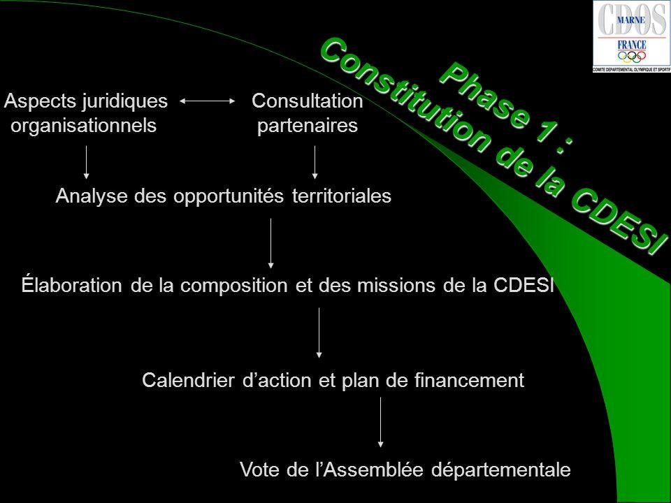 Élaboration de la composition et des missions de la CDESI Calendrier daction et plan de financementVote de lAssemblée départementale Phase 1 : Constitution de la CDESI Analyse des opportunités territoriales Consultation partenaires Aspects juridiques organisationnels