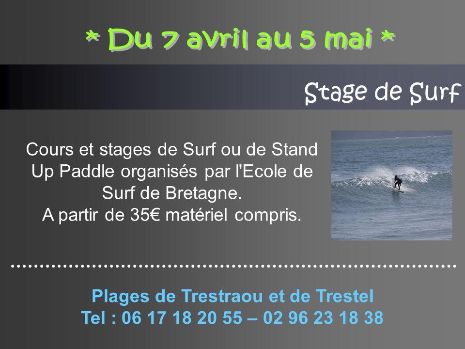 Stage de Surf Cours et stages de Surf ou de Stand Up Paddle organisés par l Ecole de Surf de Bretagne.