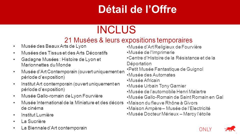 Détail de lOffre Musée des Beaux Arts de Lyon Musées des Tissus et des Arts Décoratifs Gadagne Musées : Histoire de Lyon et Marionnettes du Monde Musé