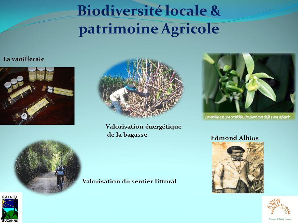 Biodiversité locale & patrimoine Agricole La vanilleraie Edmond Albius Valorisation énergétique de la bagasse Valorisation du sentier littoral