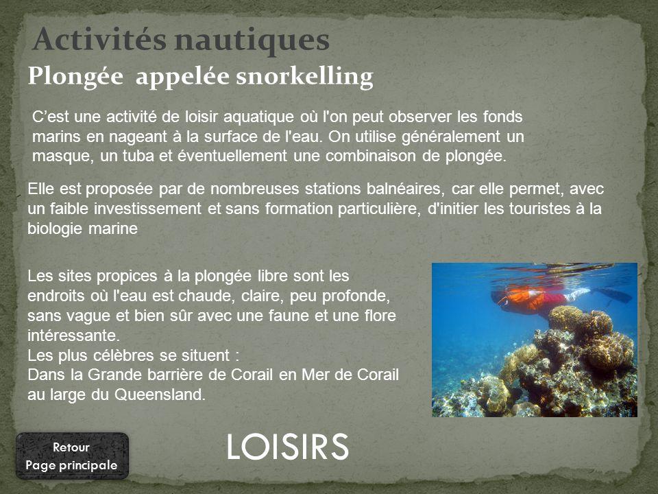 LOISIRS Activités nautiques Plongée appelée snorkelling Cest une activité de loisir aquatique où l on peut observer les fonds marins en nageant à la surface de l eau.