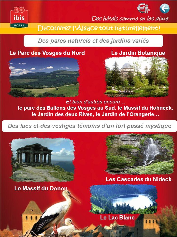 Des lacs et des vestiges témoins dun fort passé mystique Des parcs naturels et des jardins variés Le Parc des Vosges du NordLe Jardin Botanique Les Cascades du Nideck Le Massif du Donon Et bien dautres encore… le parc des Ballons des Vosges au Sud, le Massif du Hohneck, le Jardin des deux Rives, le Jardin de lOrangerie… Le Lac Blanc D é couvrez l Alsace tout naturellement !