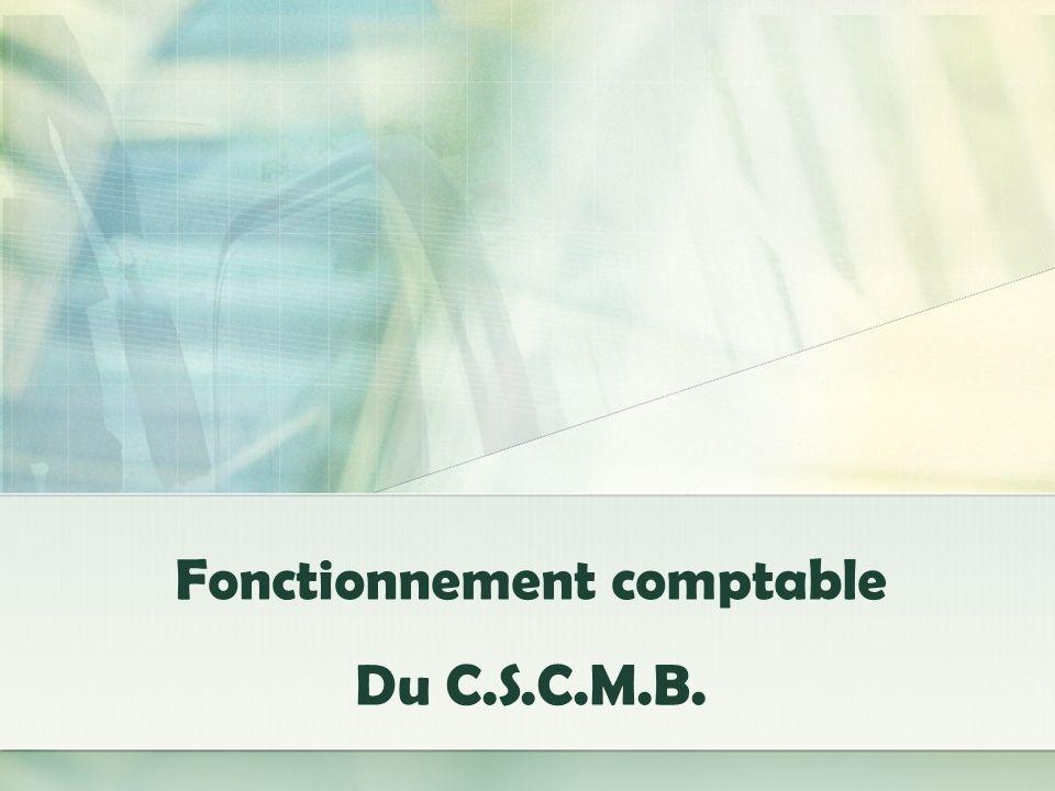 REPORTING ET CONSOLIDATION Transmission des comptabilités Une fois par mois, les 9 comptabilités du CSCMB sont transférées au coordinateur comptable du Siège par le biais dune sauvegarde CIEL.