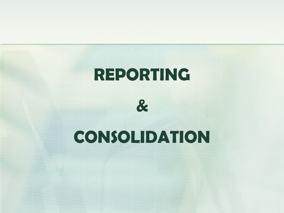 REPORTING & CONSOLIDATION