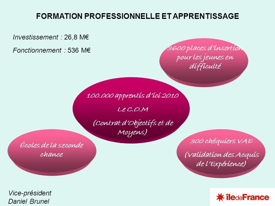 2 3 4 1 FORMATION PROFESSIONNELLE ET APPRENTISSAGE Vice-président Daniel Brunel Investissement : 26,8 M Fonctionnement : 536 M 3600 places dinsertion