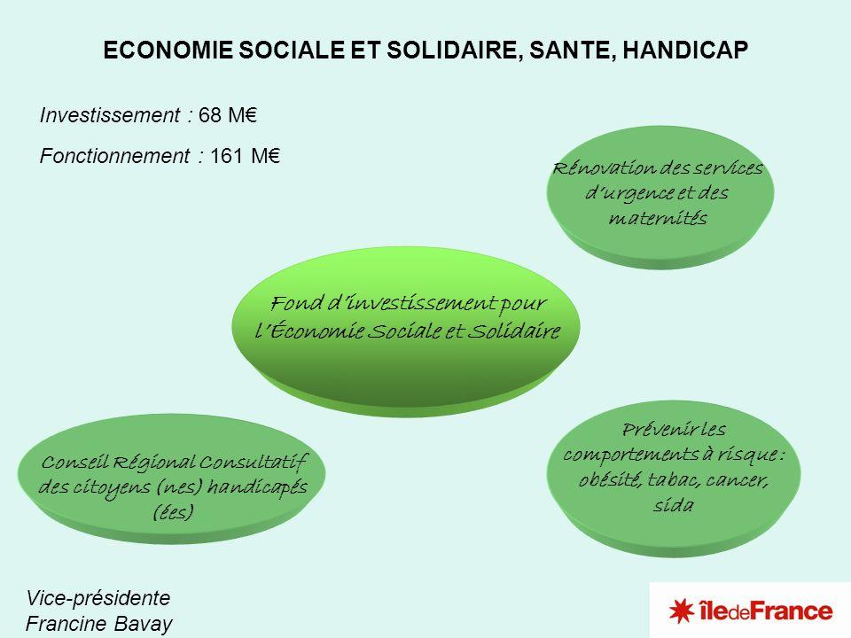 1 3 4 2 ECONOMIE SOCIALE ET SOLIDAIRE, SANTE, HANDICAP Vice-présidente Francine Bavay Investissement : 68 M Fonctionnement : 161 M Fond dinvestissemen