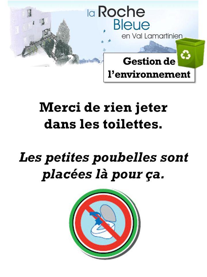 Gestion de lenvironnement Merci de rien jeter dans les toilettes. Les petites poubelles sont placées là pour ça.