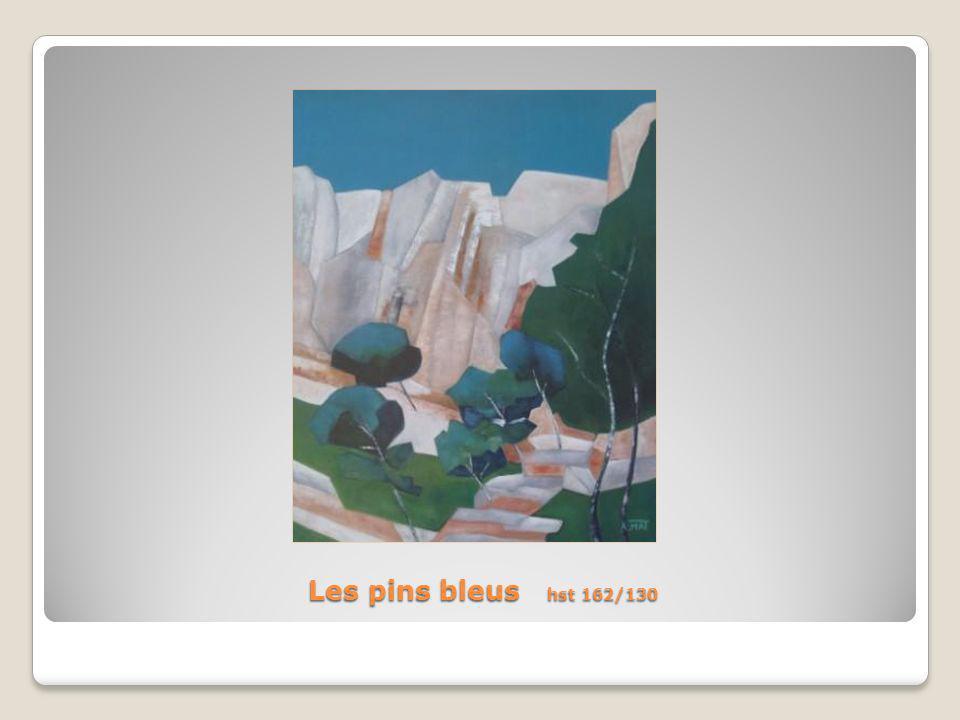 Les pins bleus hst 162/130