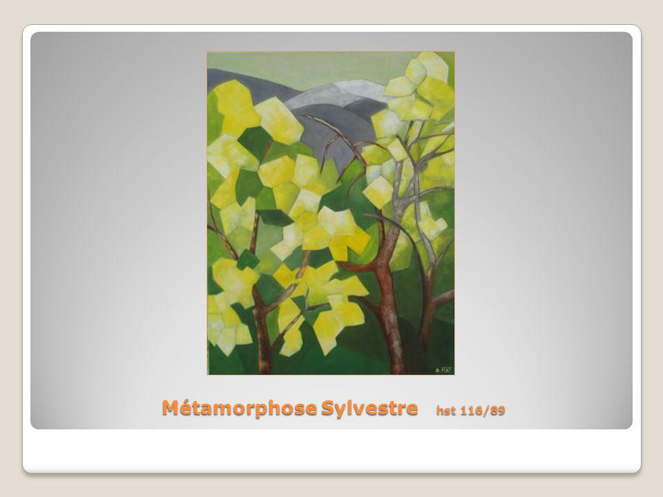 Métamorphose Sylvestre hst 116/89