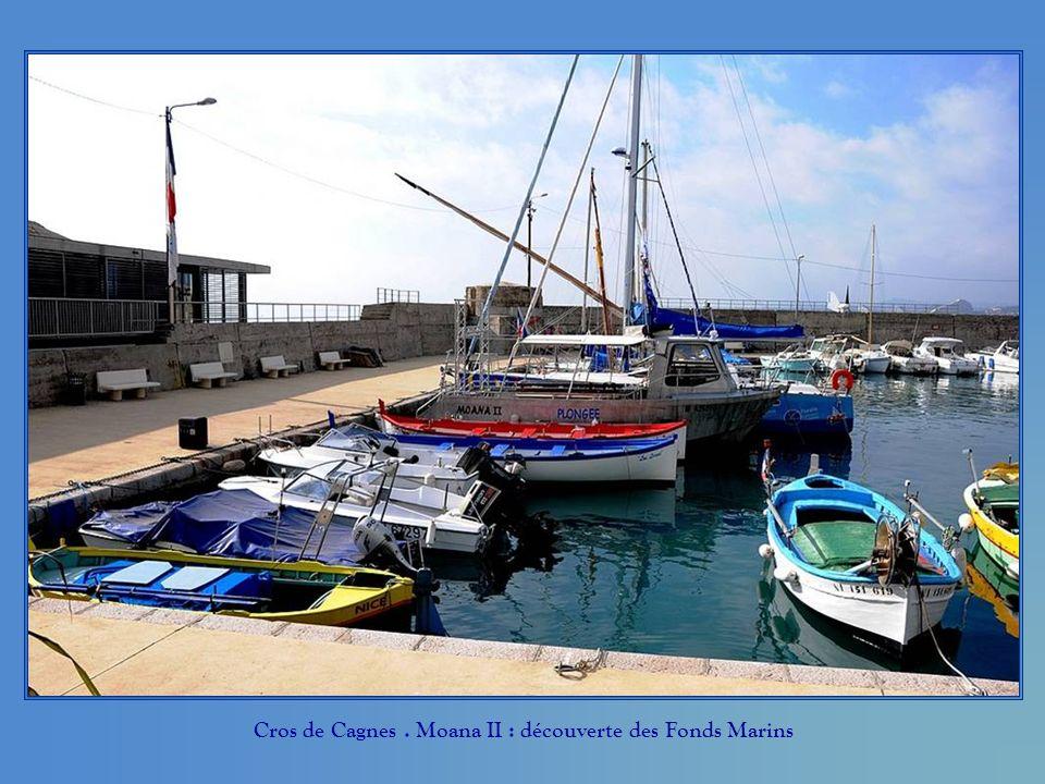 Cros de Cagnes. Moana II : découverte des Fonds Marins