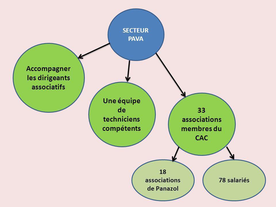 SECTEUR PAVA 33 associations membres du CAC Accompagner les dirigeants associatifs Une équipe de techniciens compétents 18 associations de Panazol 78