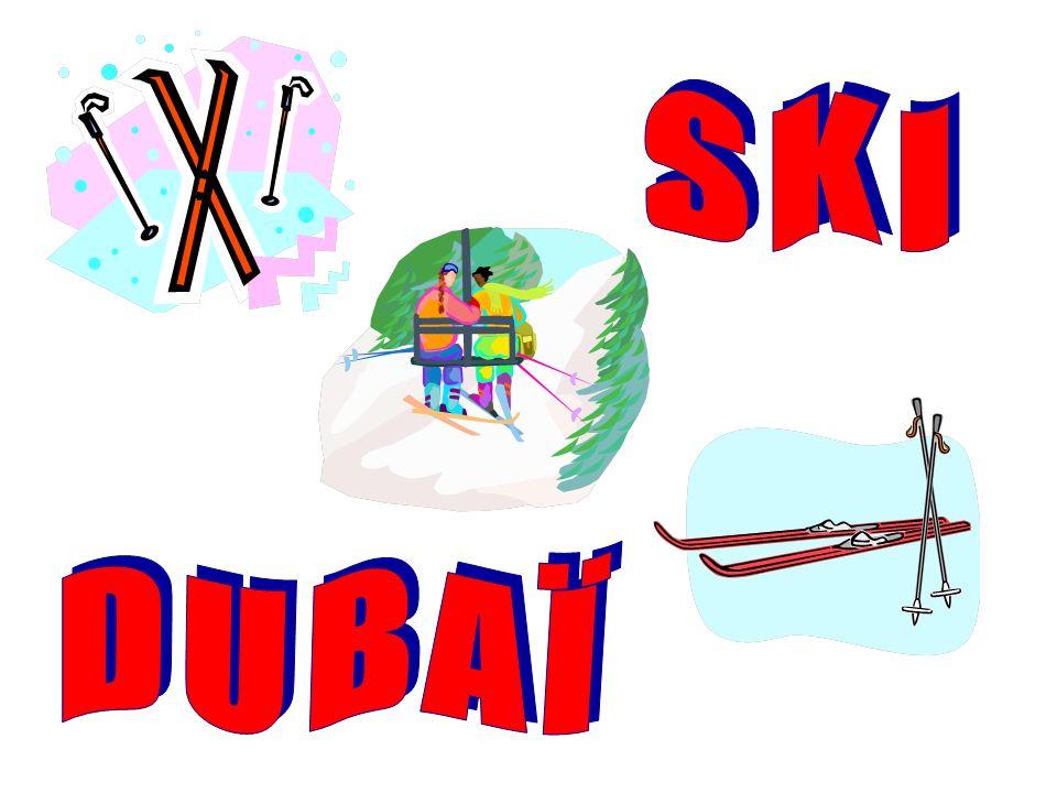 Centre commercial et Ski Dubaï Dans le centre commercial Mall of the Emirates : des centaines de boutiques en tous genres, un théâtre, un centre culturel, un parc de loisirs, un cinéma, des restaurants...