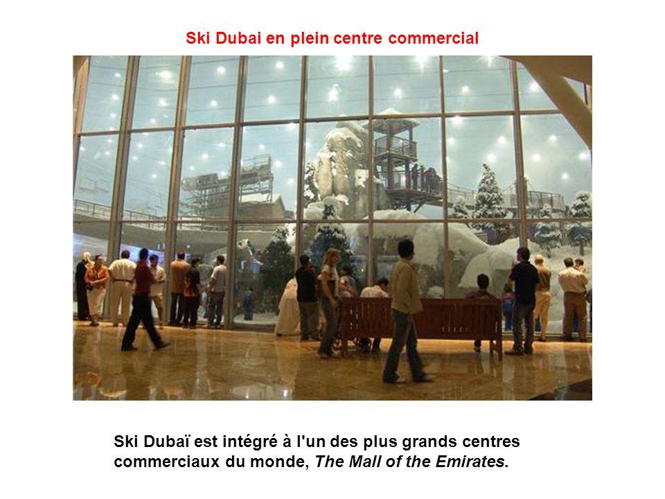 Équipe autrichienne Ski Dubaï propose 5 pistes de longueur et difficulté différentes, pour tous les niveaux, équipes professionnelles ou débutants peu