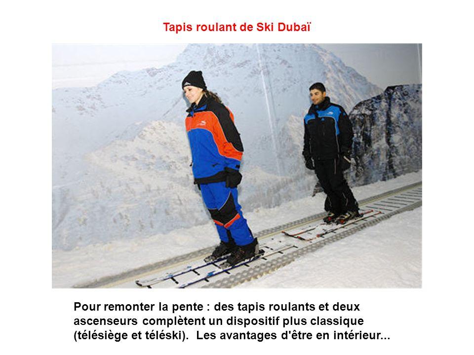 Snowpark En plus des pistes, un Snow Park de 3 000 m² crée une ambiance enneigée et pittoresque. Ceux qui ne souhaitent pas chausser skis ou snowboard