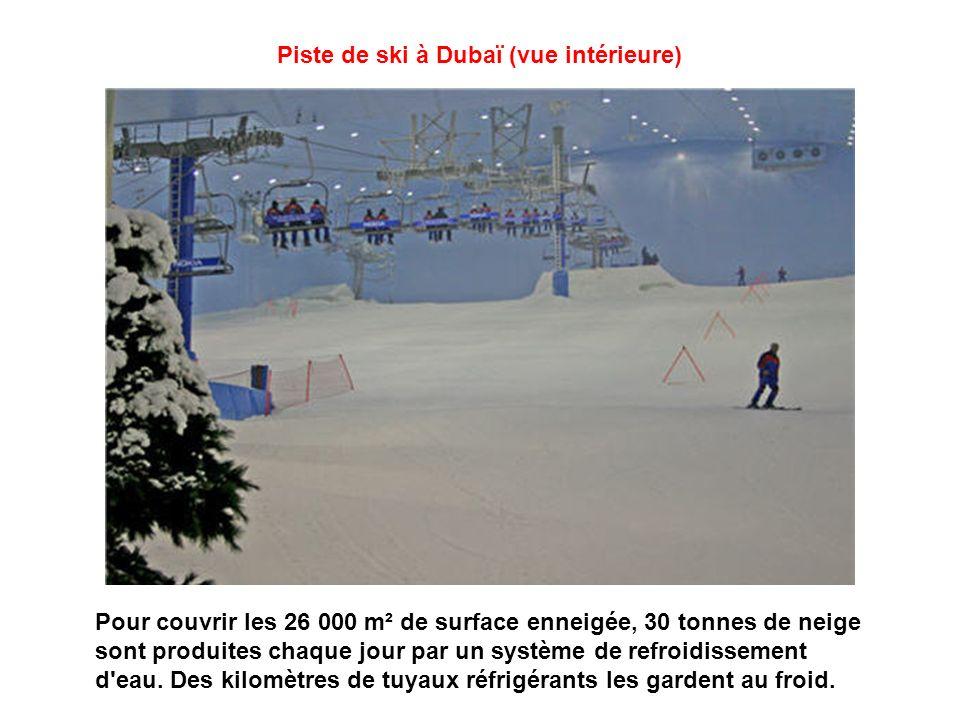 Tapis roulant de Ski Dubaï Pour remonter la pente : des tapis roulants et deux ascenseurs complètent un dispositif plus classique (télésiège et télésk