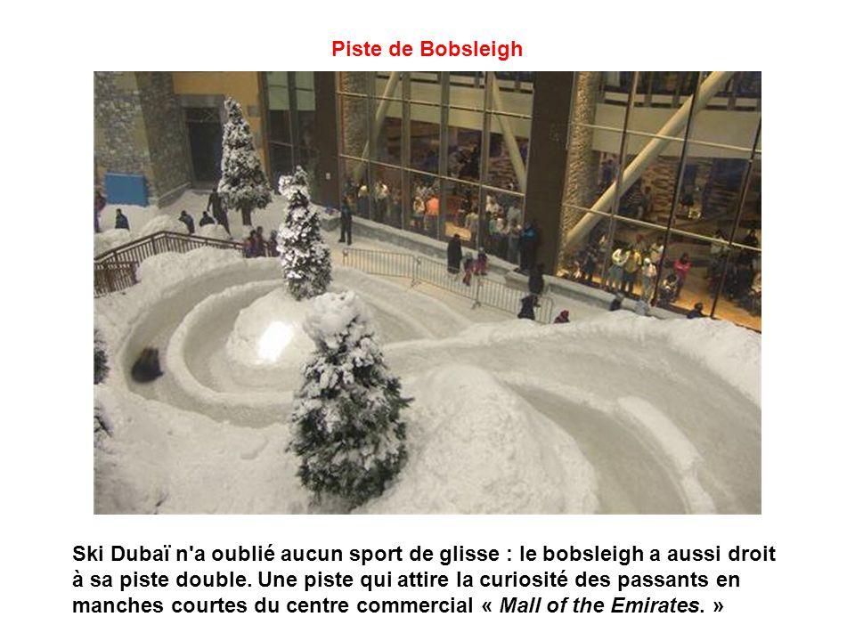 Piste de Bobsleigh Ski Dubaï n a oublié aucun sport de glisse : le bobsleigh a aussi droit à sa piste double.