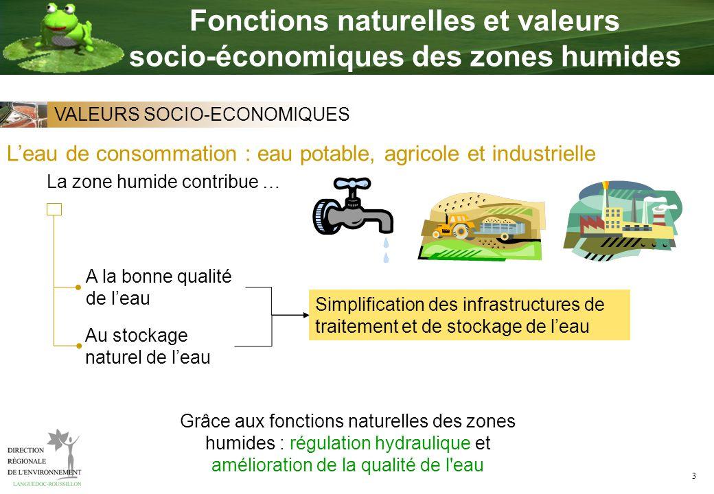 3 Leau de consommation : eau potable, agricole et industrielle A la bonne qualité de leau Grâce aux fonctions naturelles des zones humides : régulatio