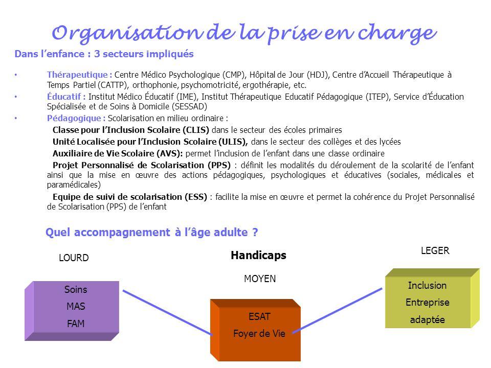 Organisation de la prise en charge Dans lenfance : 3 secteurs impliqués Thérapeutique : Centre Médico Psychologique (CMP), Hôpital de Jour (HDJ), Cent