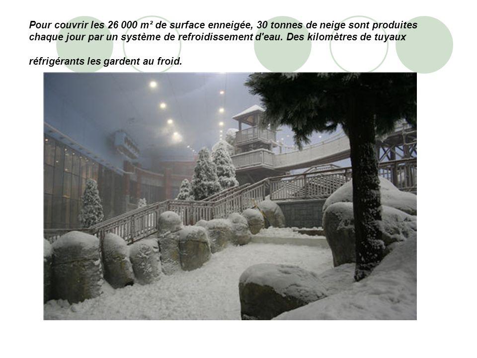 Pour couvrir les 26 000 m² de surface enneigée, 30 tonnes de neige sont produites chaque jour par un système de refroidissement d'eau. Des kilomètres
