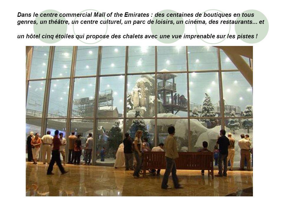 Dans le centre commercial Mall of the Emirates : des centaines de boutiques en tous genres, un théâtre, un centre culturel, un parc de loisirs, un cin