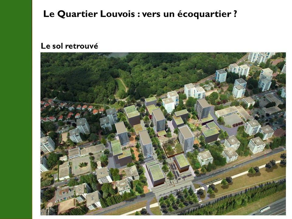 Le Quartier Louvois : vers un écoquartier ? Le sol retrouvé Forêt de Meudon Tramway