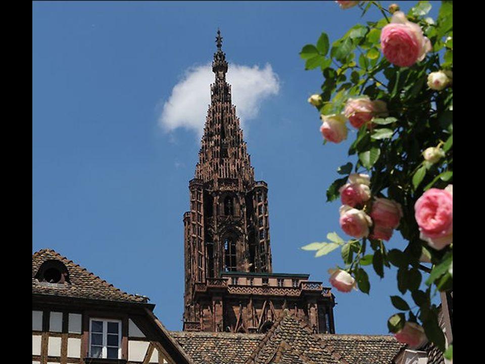 Le Zénith Strasbourg-Europe (2008)