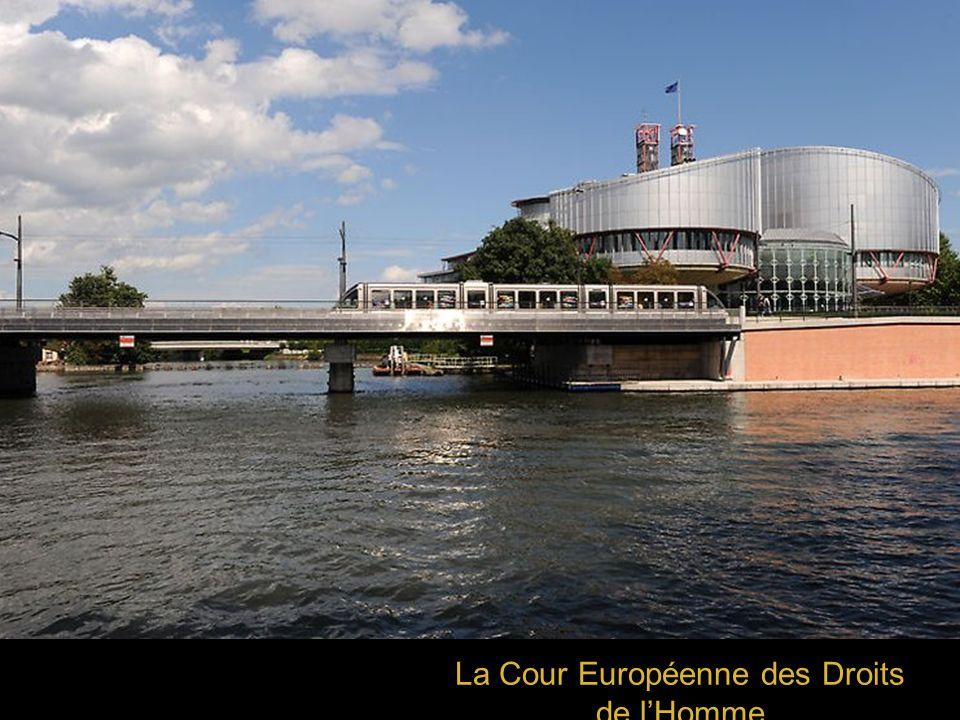 La Cour Européenne des Droits de lHomme