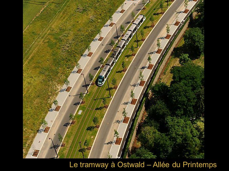 Le tramway à Ostwald – Allée du Printemps