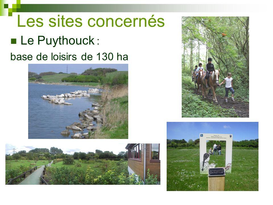 Le Prédembourg Petit Prédembourg (espace boisé classé de 40 ha) Grand prédembourg (80 ha de jeune boisement, prairies et zones humides)
