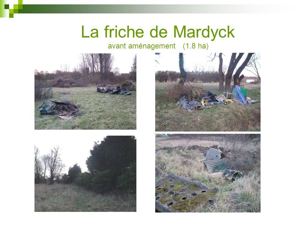 La friche de Mardyck avant aménagement (1.8 ha)