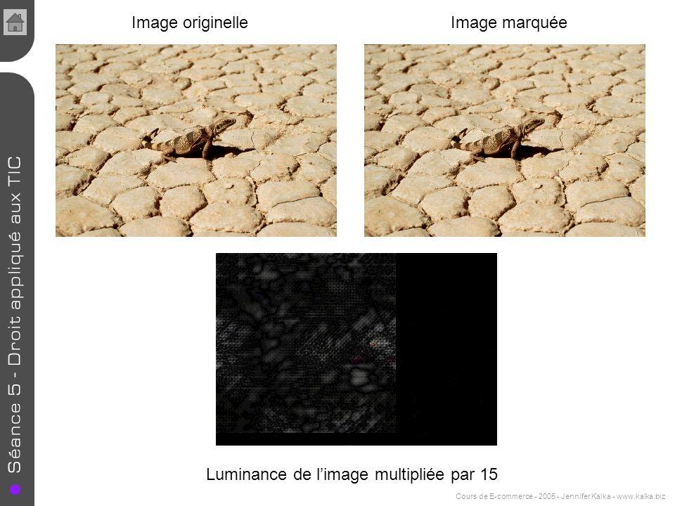 Cours de E-commerce - 2005 - Jennifer Kalka - www.kalka.biz Image originelleImage marquée Luminance de limage multipliée par 15