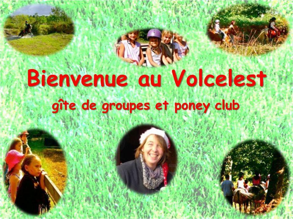 Bienvenue au Volcelest gîte de groupes et poney club